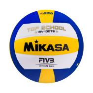 Мяч волейбольный ISV 100TS, фото 1