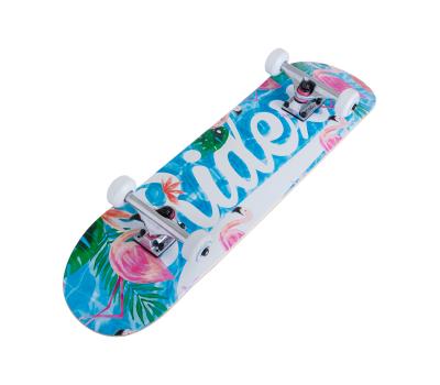 Скейтборд Oasis 31.6''X8'', ABEC-5, фото 3