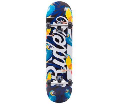 Скейтборд Arini 31.6''X8'', ABEC-5, фото 1