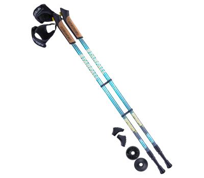 Палки для скандинавской ходьбы Starfall, 77-135 см, 2-секционные, синий/серый/жёлтый, фото 1