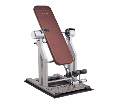 Инверсионный стол Z-UP 5, 220B, Корея, серебряная рама,  коричневая спинка, фото 1